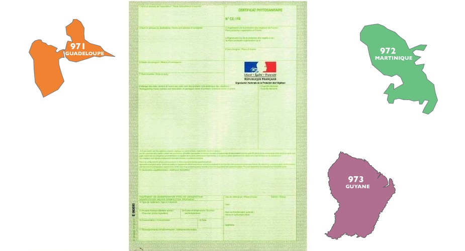 Certificat phytosanitaire 1
