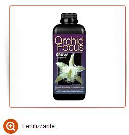 Fertilizzante orchidea italia