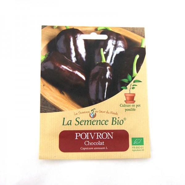 Graines bio de poivron corno di toro chocolat 20gn
