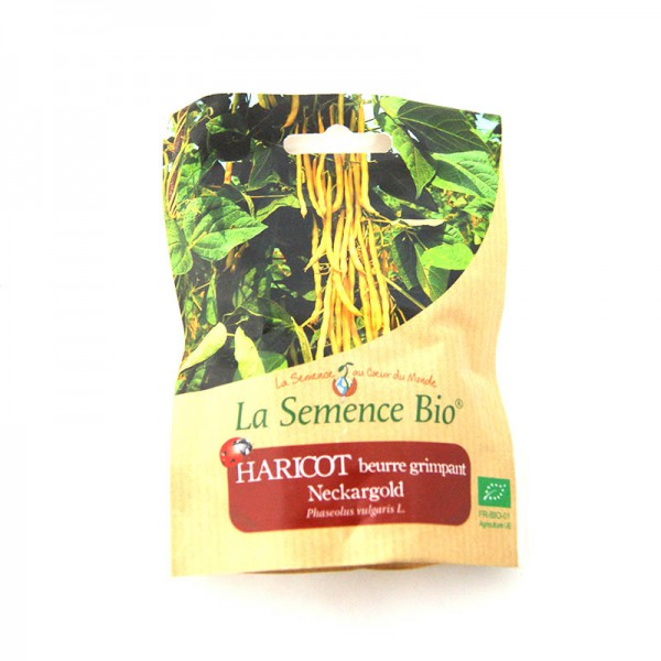 Graines bio haricot beurre grimpant neckargold 75g