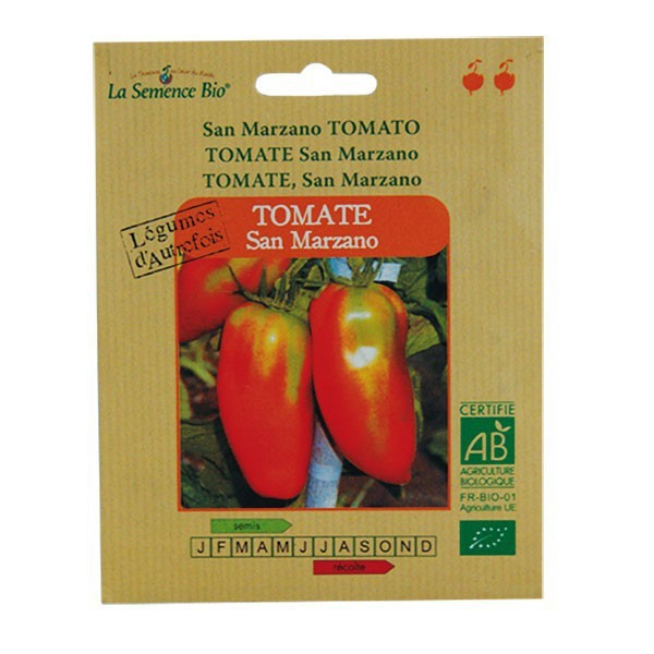 Graines bio tomate san marzano