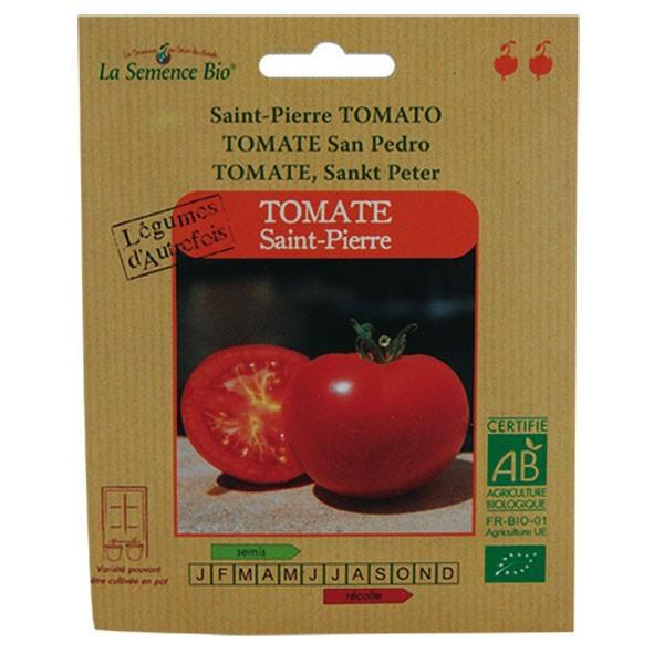Graines bio tomate st pierre