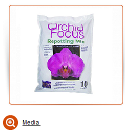 Media orchideen sphaigum orchid focus
