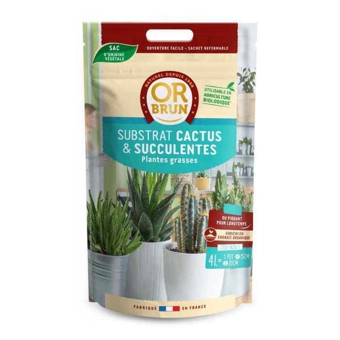Or brun terreau cactus et succulentes 4l