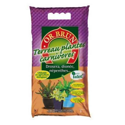 Or brun terreau plantes carnivores