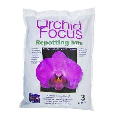 Orchid focus medium 3l