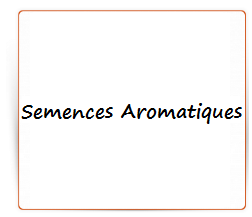 Semences aromatiques